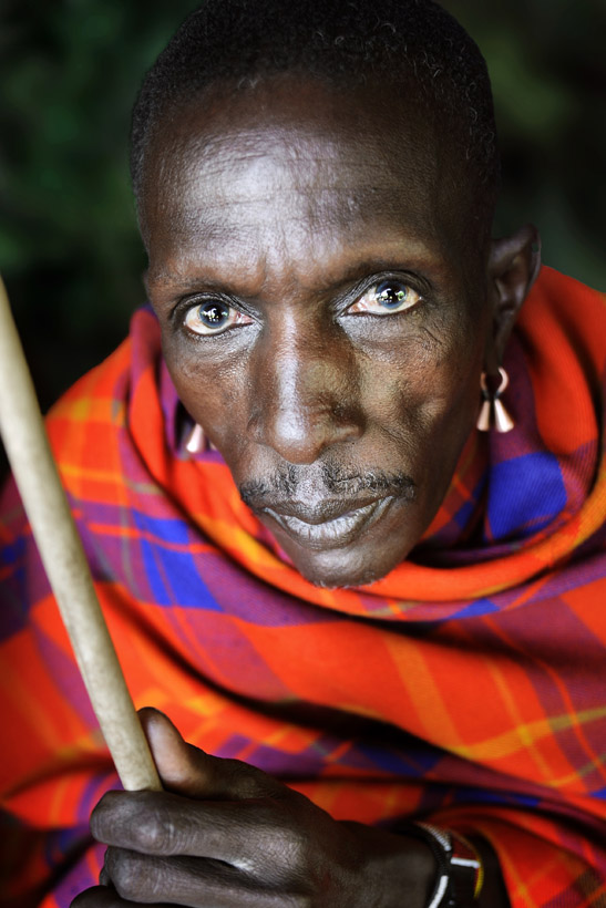 Masai Warrior Portrait 3