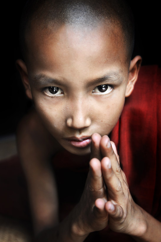 Novice Monk Praying