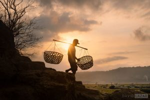 Indonesia: Borneo, Lembongan, Ijen