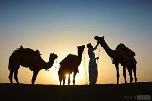 NORTHERN INDIA PHOTO TOUR WORKSHOP (15 DAYS)