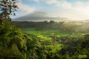 Bali, Indonesia, Photo Tour Workshop (12 Days)
