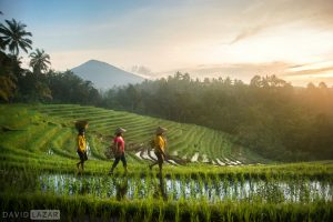 Bali, Indonesia Photo Tour Workshop (12 Days)