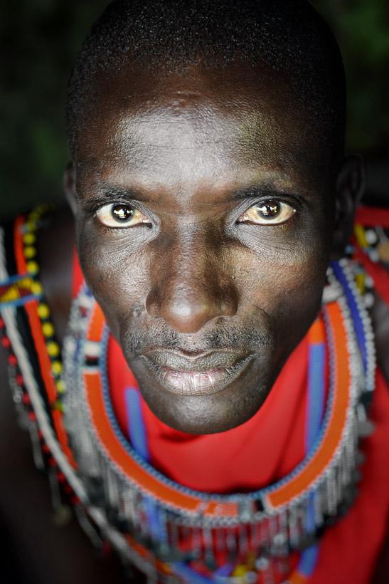 Masai Warrior Portrait 1