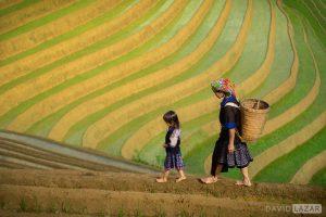 Culture of Vietnam